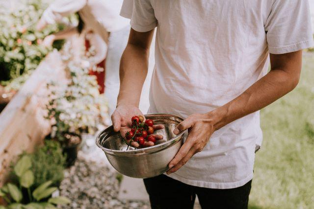 Közösségi kertekkel az önfenntartó mindennapok és városrészek felé