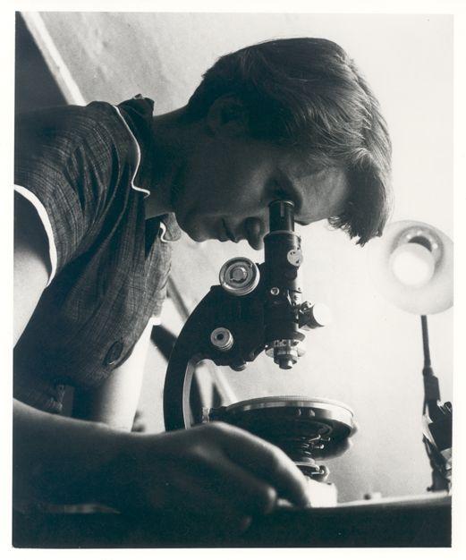 Úttörő nők a tudományban