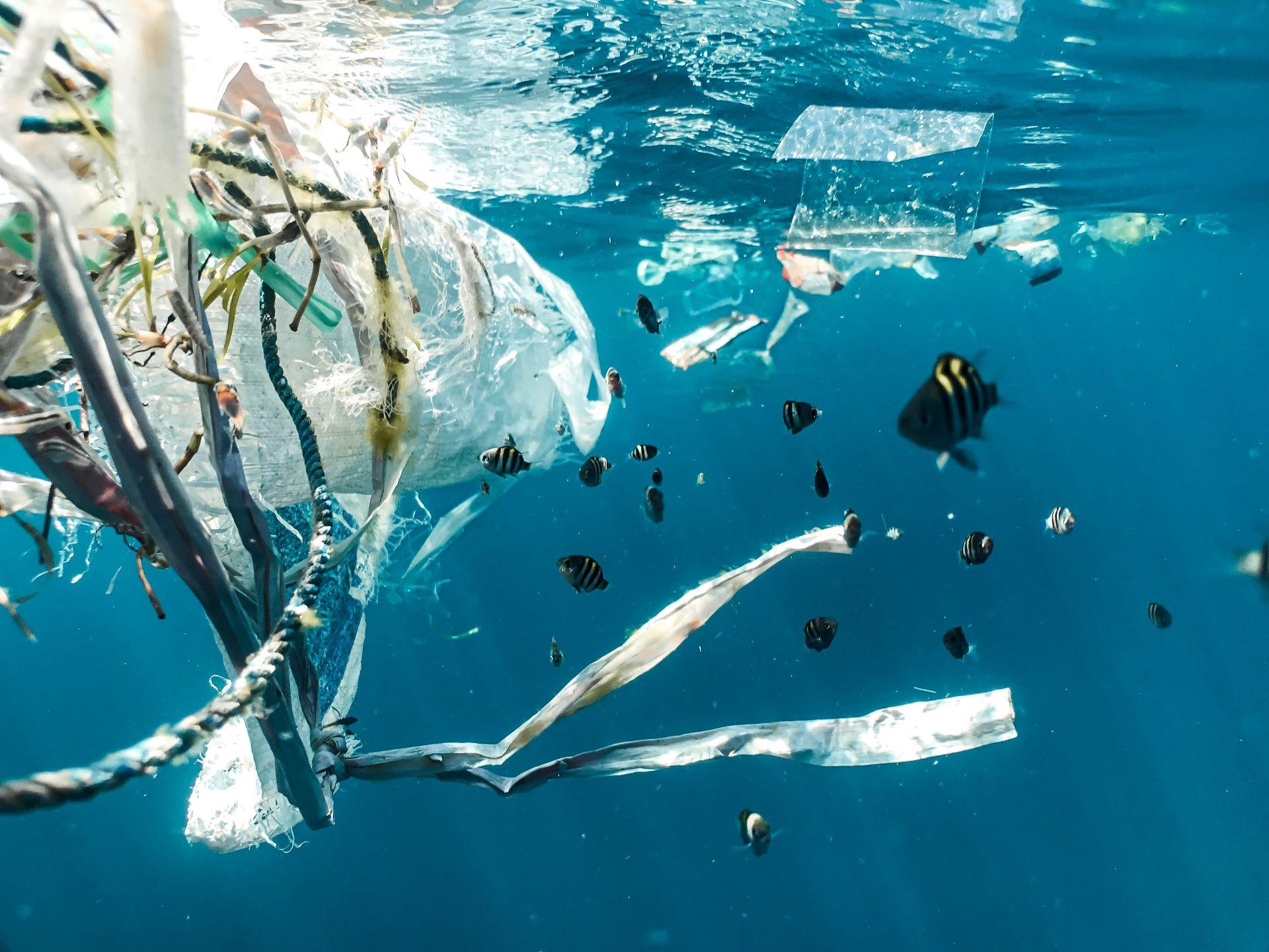 óceáni hulladék